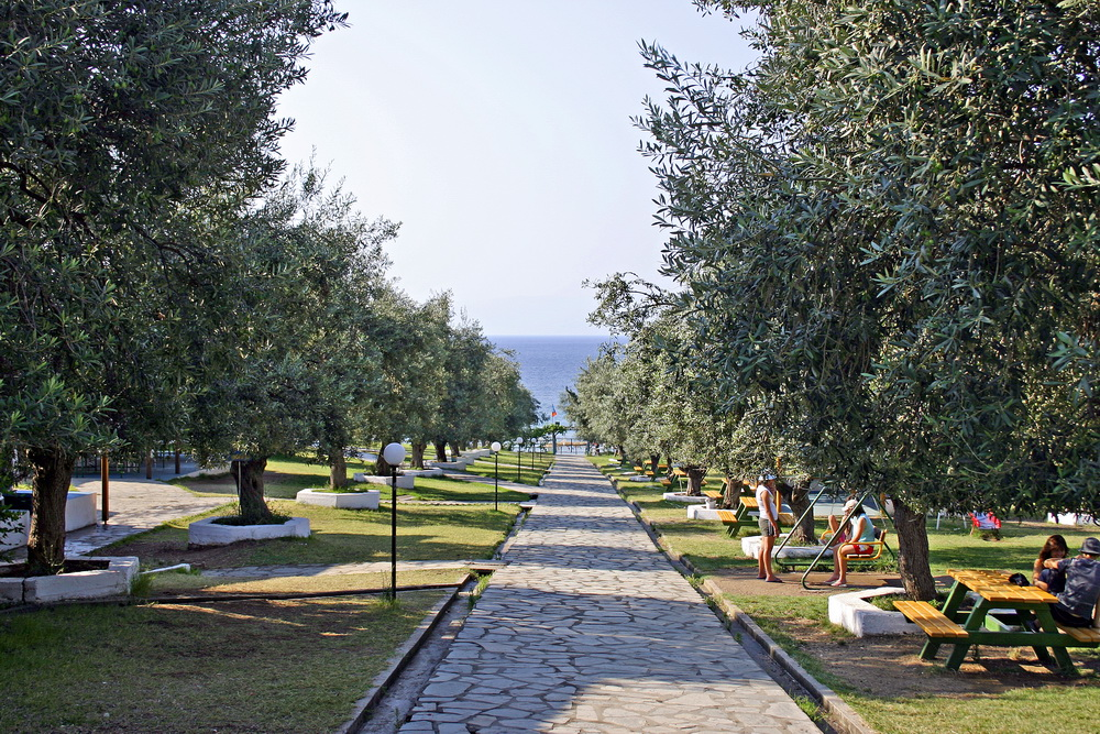 path-